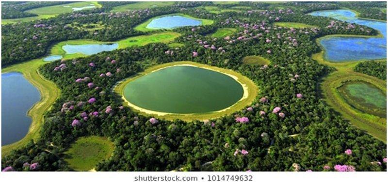 brazil central west
